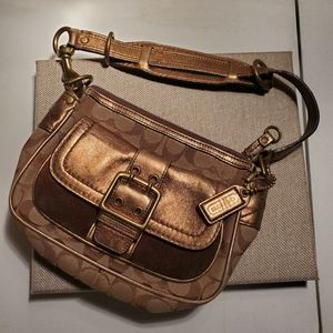 Limited Edition Bronze Coach Bag
